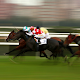 Singapore Horse Racing Live apk