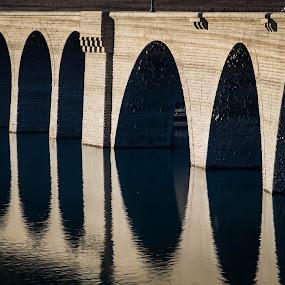 by Eden Meyer - Buildings & Architecture Other Exteriors ( arch, lake, architecture, bridge, landscape )