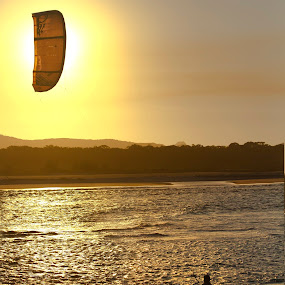Out of the Sun by Rick Sherwin - Sports & Fitness Watersports ( kite surfing, speed, noosa, sunset, action )