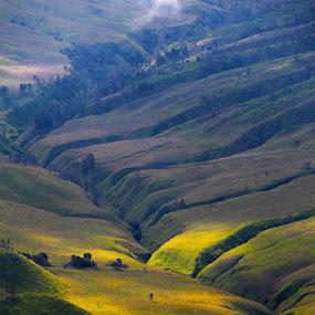 .: savana :. by Wb Wilapa - Landscapes Prairies, Meadows & Fields