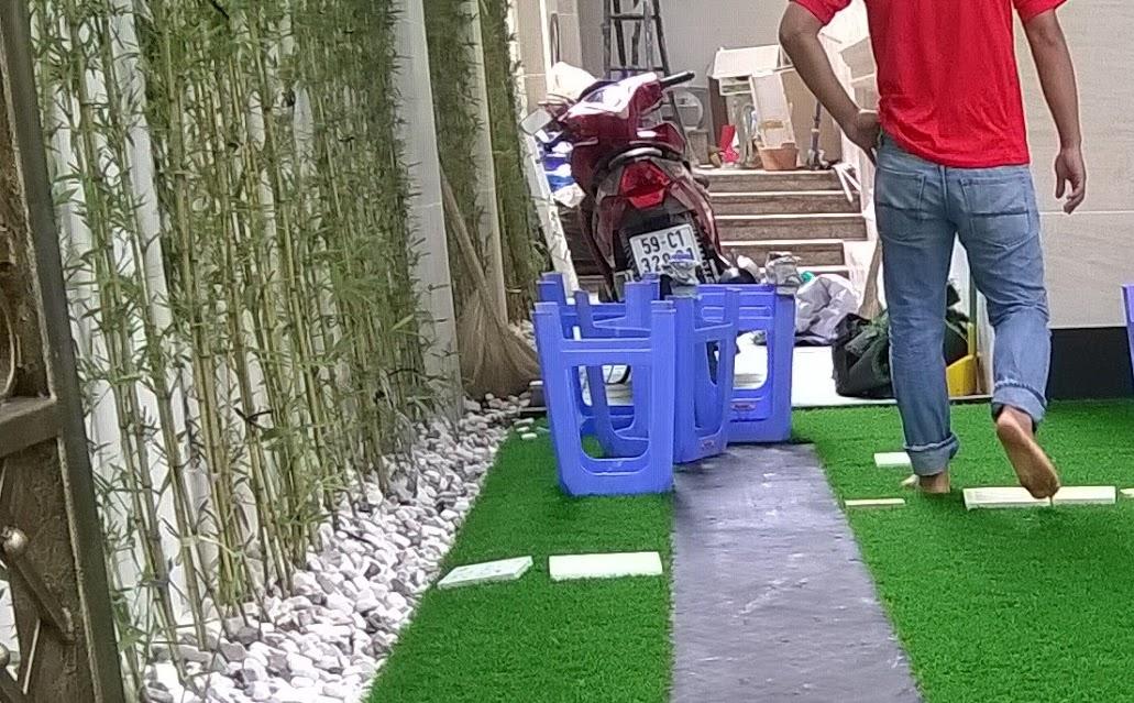 cơ sở nào cung cấp cỏ sân vườn hay nhất hiện nay