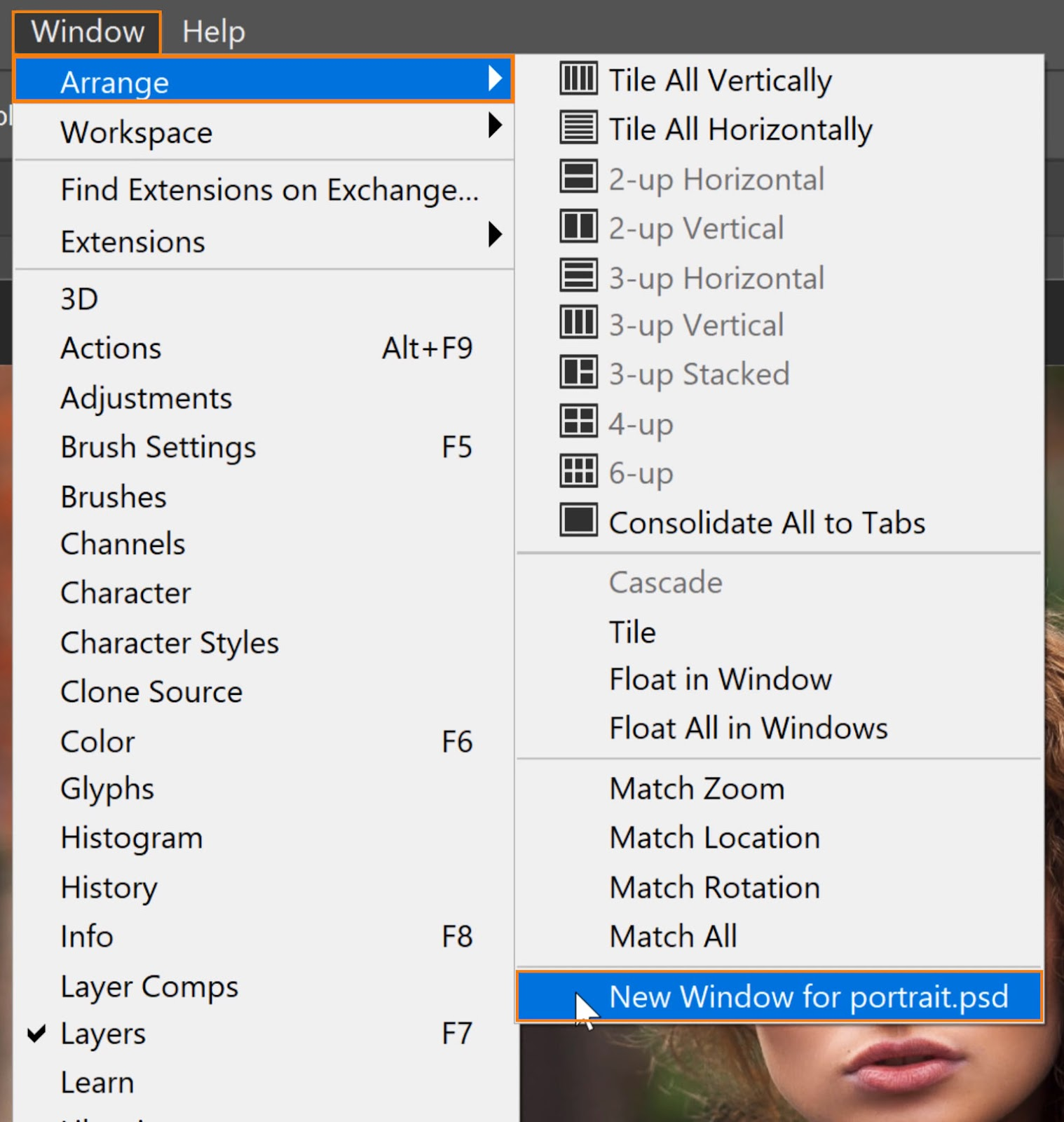 choose Window > Arrange > New Window for (name of the file).