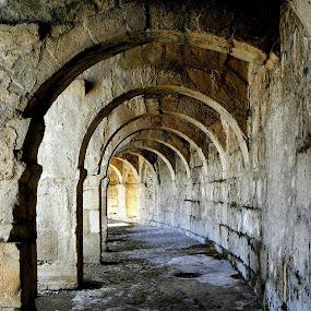 music by Vygintas Domanskis - Buildings & Architecture Public & Historical ( , #Gautam buddha  )