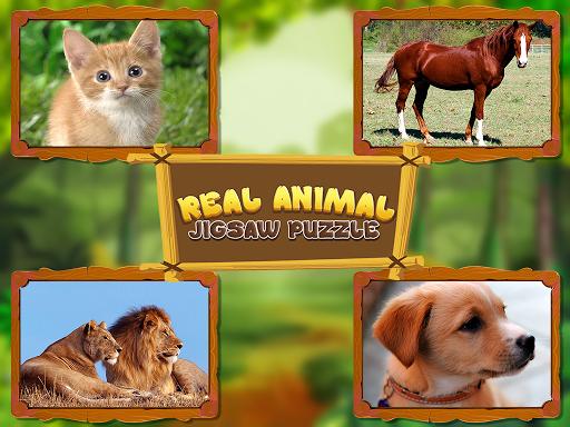 Animal Jigsaw Puzzles DayCare 1.0 screenshots 9