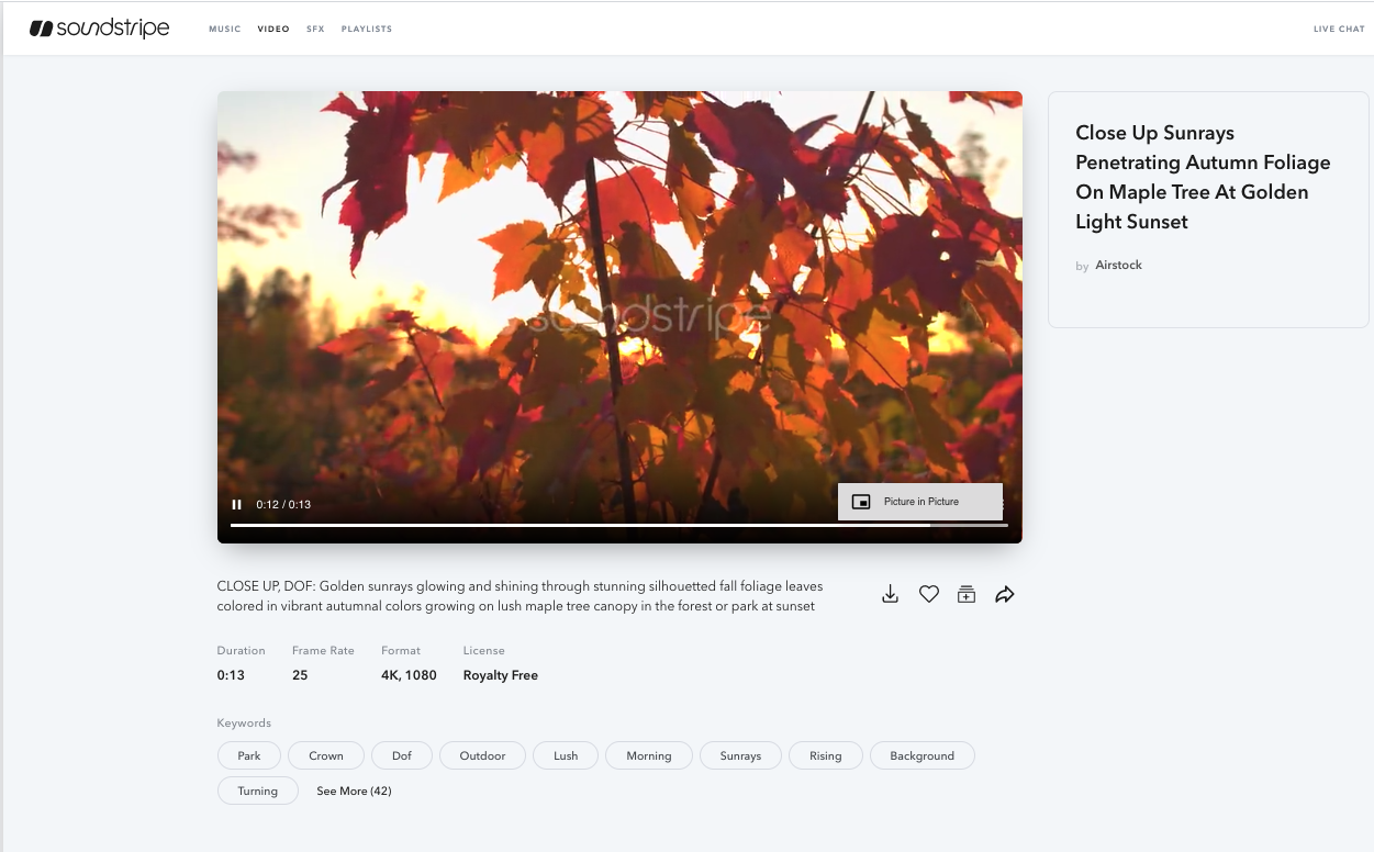 Video details page