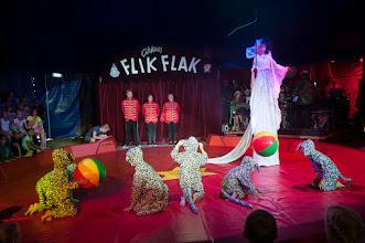 Photo: Cirkus Flik Flak.Sted: Heruf Trolles Vej 138, 5220 Odense SØ.Dato: 02/08/14Journalist: Foto: Alex Tran