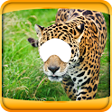 Animal Photo Montage Editor icon