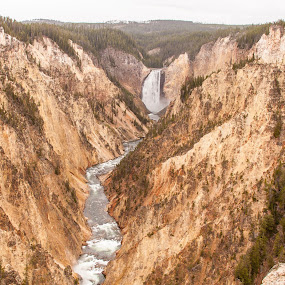 The Other Grand Canyon by Craig Pifer - Landscapes Mountains & Hills ( grand canyon of the yellowstone, yellowstone, fot, lower falls )