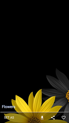 AMOLED Wallpapers Screenshot