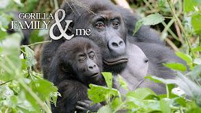 Gorilla Family and Me thumbnail