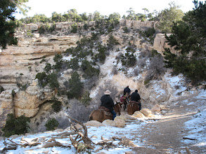 Photo: Grand Canyon (sharing the trail with horses)