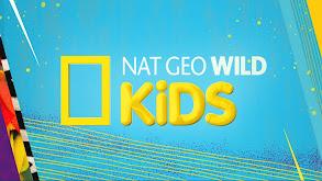 Nat Geo Wild Kids thumbnail