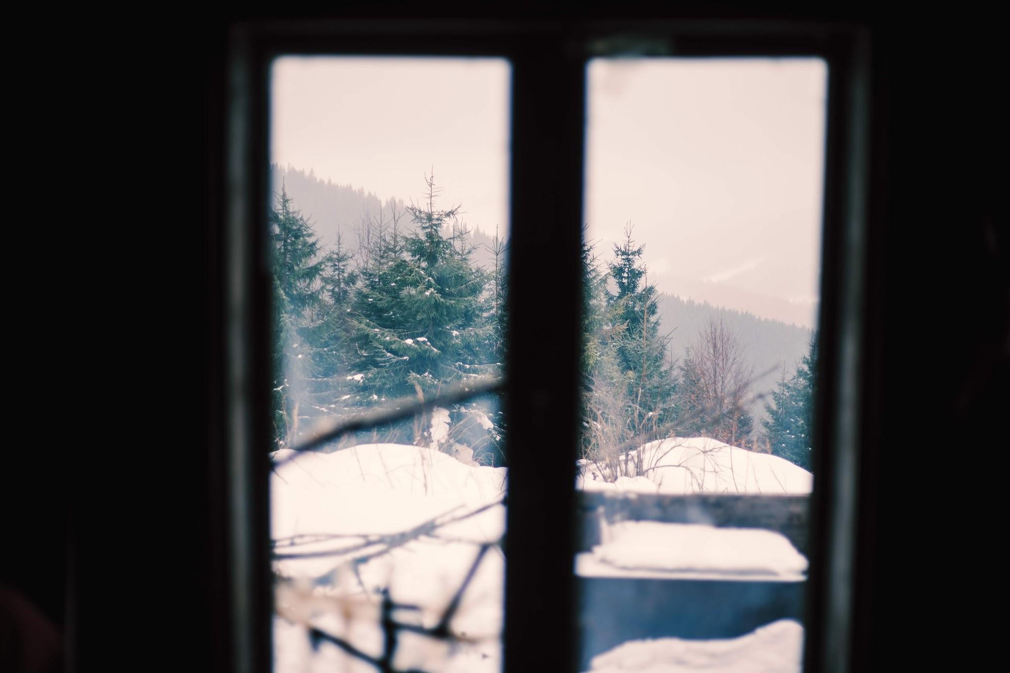 Вікно хатки (Явори)