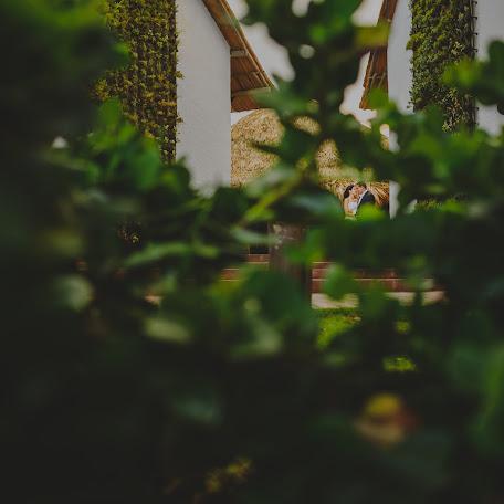 Fotógrafo de bodas Jean Silvestre (slfotografia). Foto del 26.08.2015