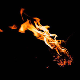 Burning pine needles by Martha Irvin - Abstract Fire & Fireworks (  )