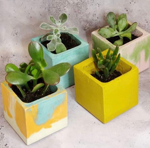 pot en béton pour succulente