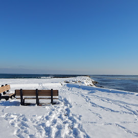 Benches Overlooking Ocean in Winter by Kristine Nicholas - Novices Only Landscapes ( water, icy, bench, waterscape, sea, ocean, beach, seascape, landscape, snoewy, benches, winter, cold, ice, snow, reservation, rocks, wall, waterway,  )