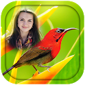 Birds Photo Frames icon