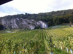 Photo: More Swiss vineyards