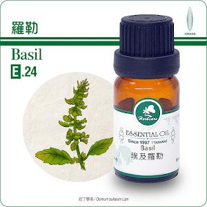 羅勒精油10ml/Basil