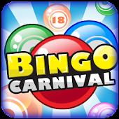 Bingo Carnival: Millionaire