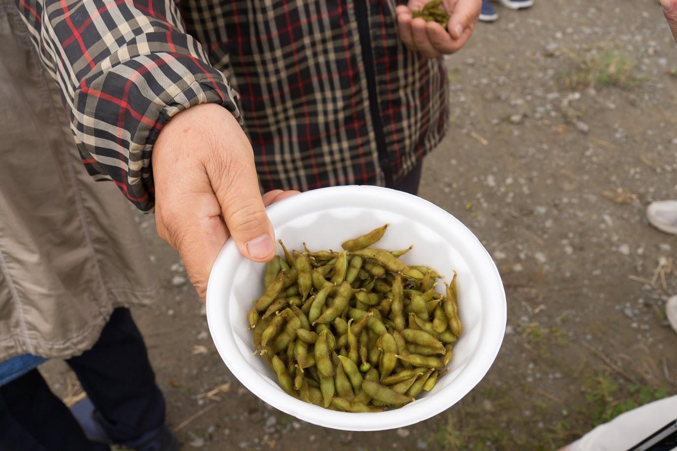 黒千石大豆の枝豆