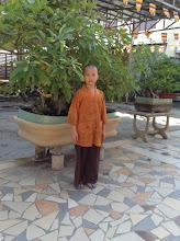 Photo: Tang Minh Luan