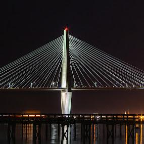 Ravenel Bridgh side view at night by Teresa Solesbee - Buildings & Architecture Bridges & Suspended Structures ( charleston, night, suspension bridge, photography, ravenel bridge )
