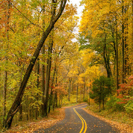 Country Road in Berks County, PA. by Jerry Hoffman - Landscapes Caves & Formations (  )