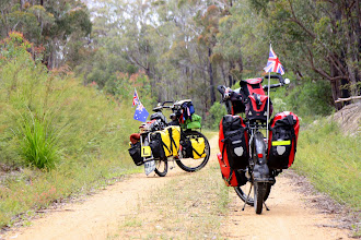 Photo: Year 2 Day 159 - Big Boy and Sally on the East Gippsland Rail Trail