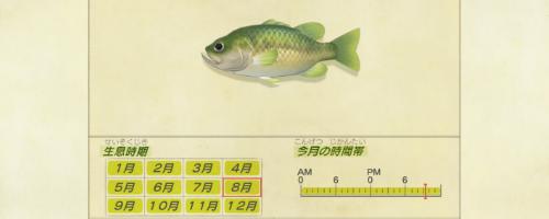 あつ森 魚 値段 ブラックバス