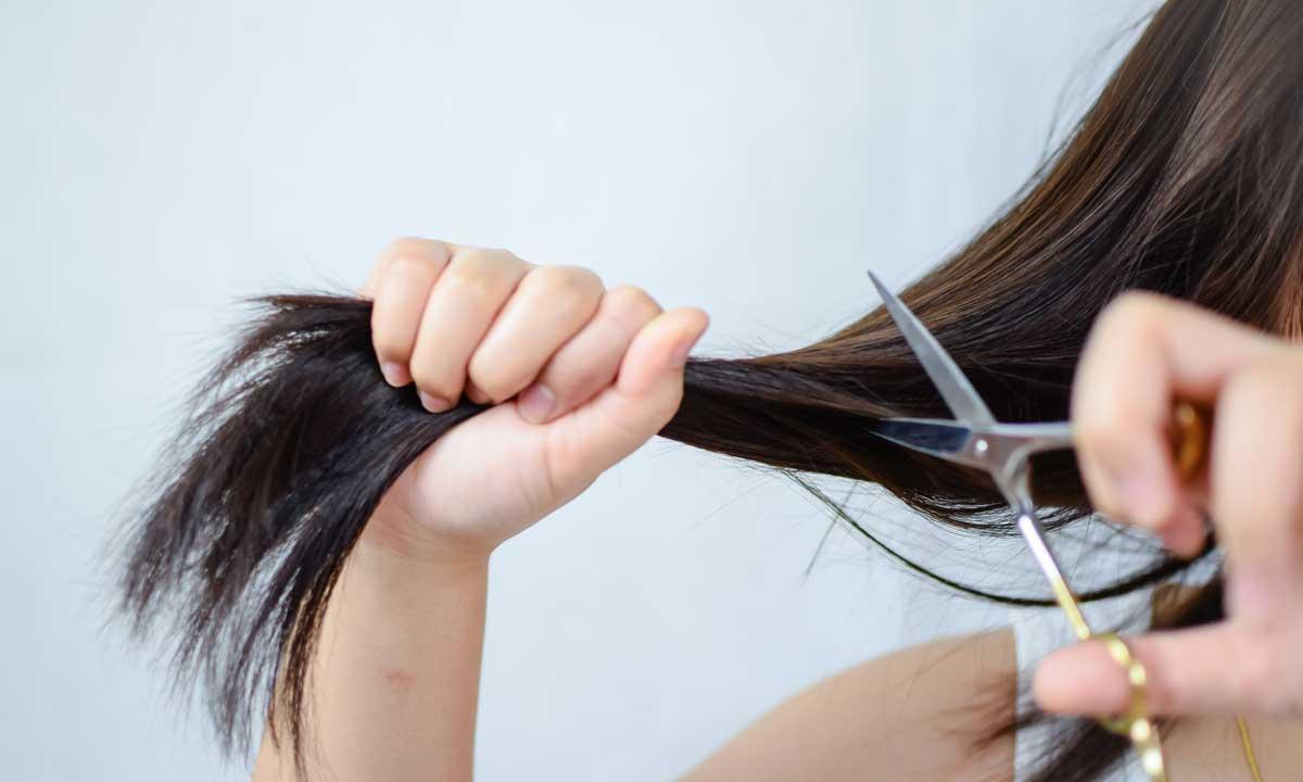 tentukan akan memotong rambut saat basah atau kering