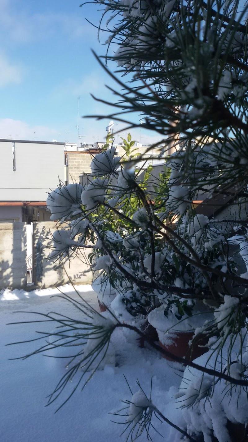 Snow di GiovyGio