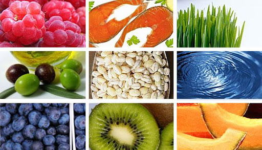 Nutrition FL95