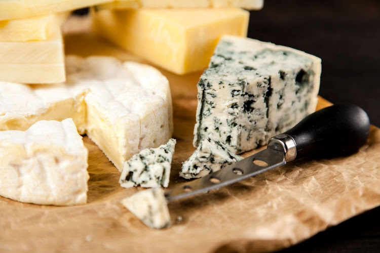 We have ancient ancestors to thank for the cheese we eat today.