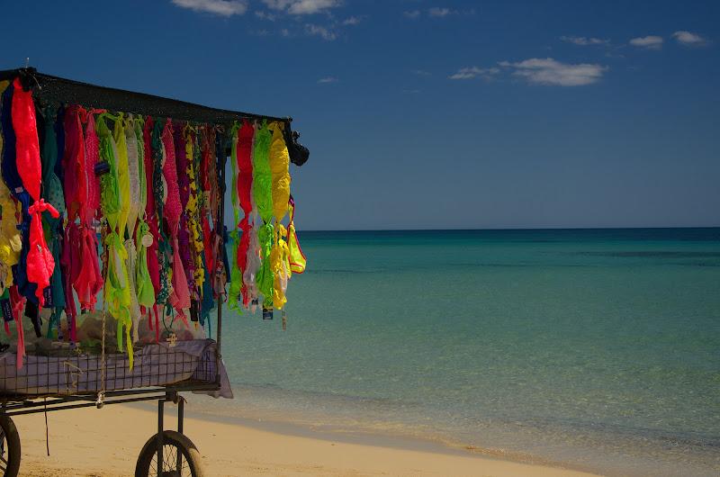 I colori dell'estate. di Gian Piero Bacchetta