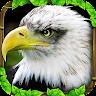 com.glutenfreegames.eaglesimulator