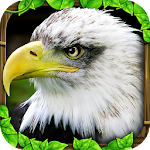 Eagle Simulator™ Icon