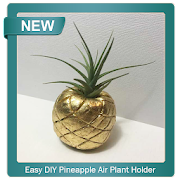 Easy DIY Pineapple Air Plant Holder icon
