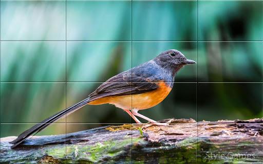 Sparrows Puzzle  screenshots 4