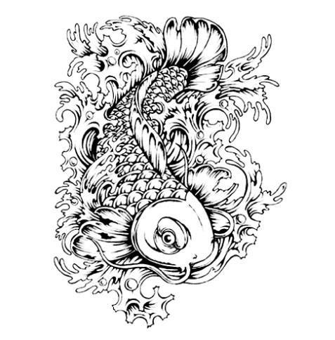 Gambar Ikan Koi Sketsa