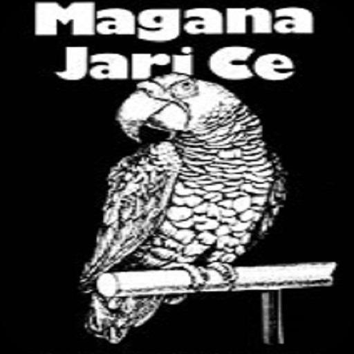 Littafin Magana Jarice