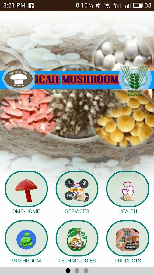 prospects of mushroom farming at savar Main objective of this report is to analysis prospects of mushroom in bangladesh, here focus on mushroom products  there is a huge prospect of mushroom cultivation in bangladesh it can.