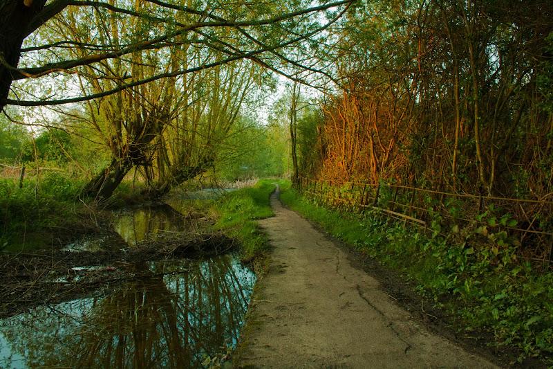 Photo: The path not taken - #photography #suffolk #uk