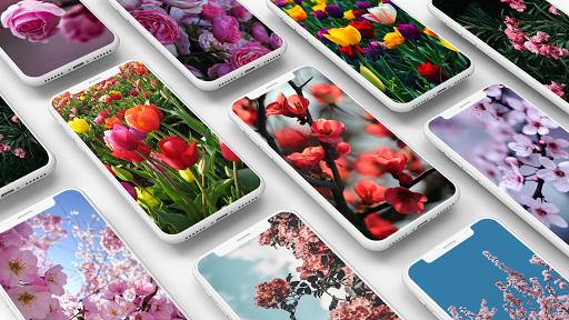 Spring Wallpapers 1.1 screenshots 1