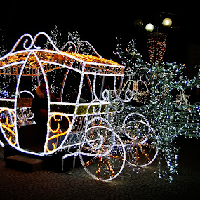 Fairy tale in Ploiesti by Ciprian Apetrei - Public Holidays Christmas ( winter, romania, christmas, decoration, lights )
