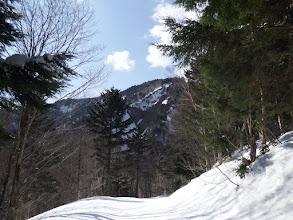 林道を下山
