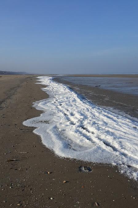 neige de mer