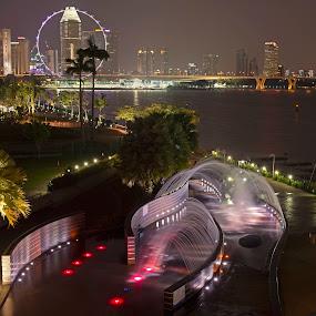 by Joydeep Sen Chaudhuri - Landscapes Starscapes ( illuminated, skyline, fountain, singapore, marina barrage, nightscape )