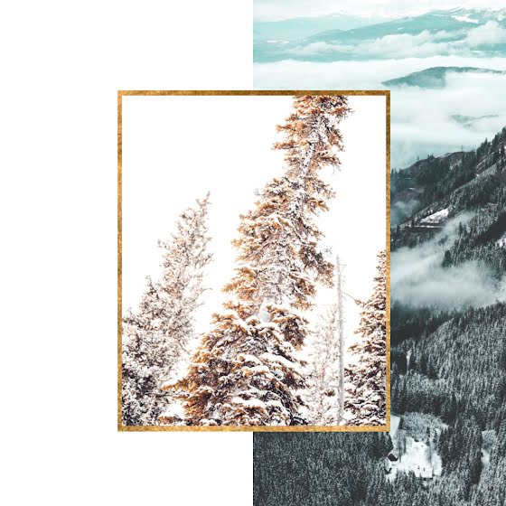 Snow Covered Trees - Instagram Post Template